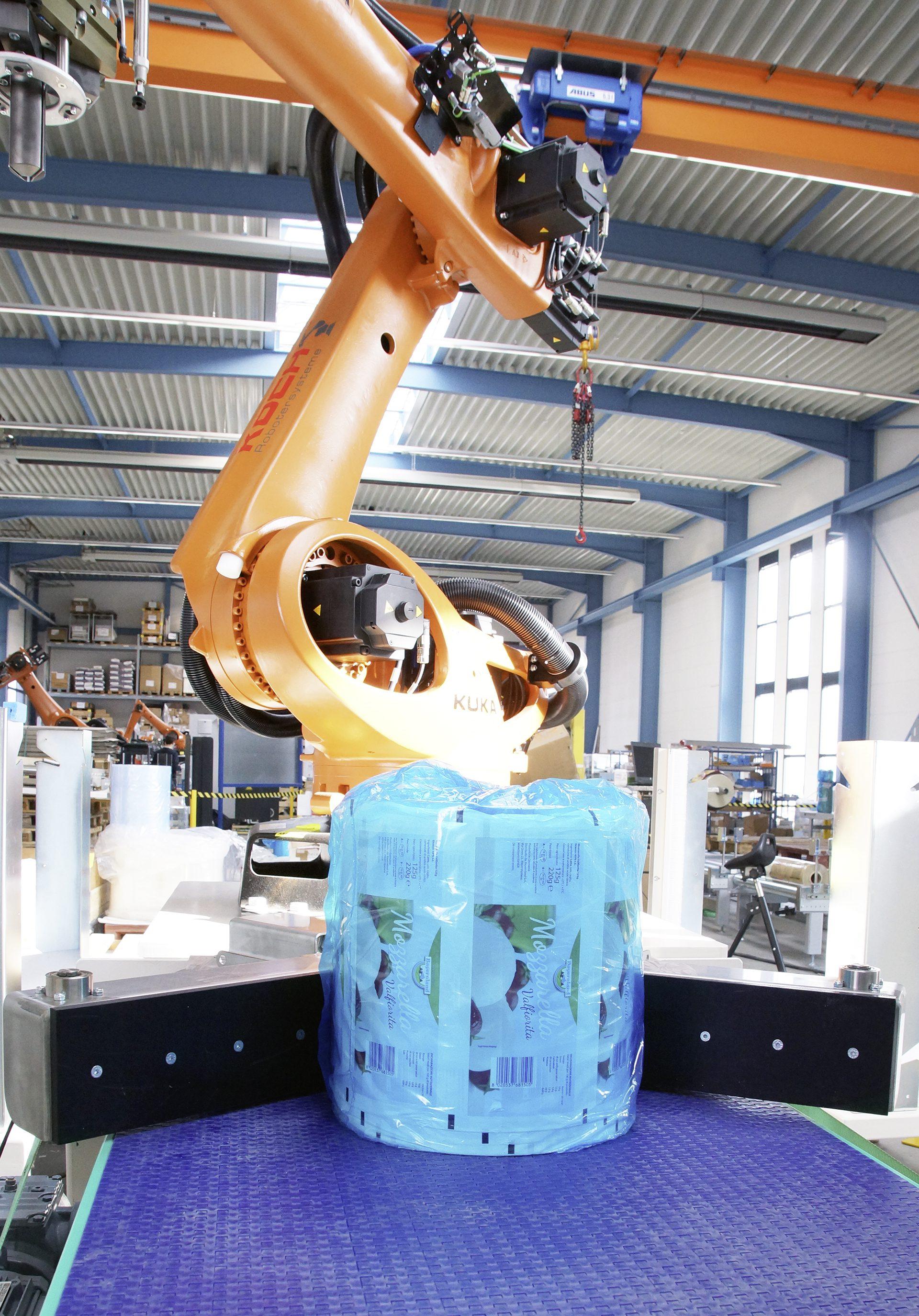 Beispiele realisierter anlagen koch robotersysteme for Koch roboter